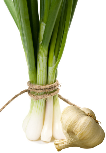 onion___Garlic.jpg